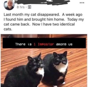 among us lost cat meme imposter - Good/Bad Marketing
